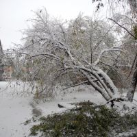 апокалиптический снегопад, Спасск-Дальний