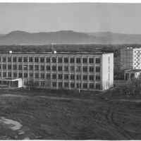 Средняя школа №2, 1981 год, Чугуевка