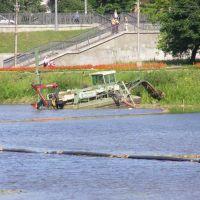 Великие Луки. Очистка реки Ловать (08.08.2006), Великие Луки
