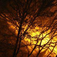 Зимний, ночной двор. Вид из окна, Великие Луки