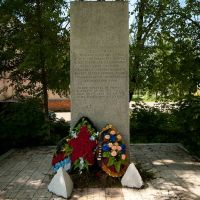 памятник партизанам, Дедовичи