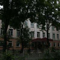 Дноўская школа, Дно