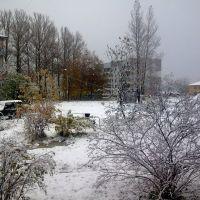 Неожиданно пришла зима, Дно