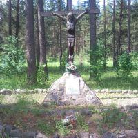 пос. Идрица. Памятник жертвам фашистской окупации, Идрица