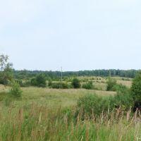 Поле - Field, Красногородское