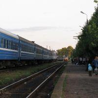 Прибывающий поезд № 688 Санкт Петербург-Великие Луки. 24 августа 2009 г., Локня