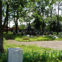 Братское кладбище, Невель