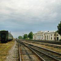 Gare de Novosokolniki, Новосокольники