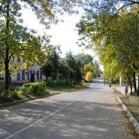 осень, 2003, Новосокольники