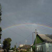 Радуга над моим городом., Новосокольники