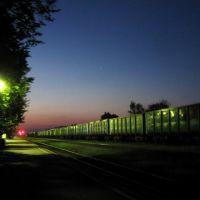 Железнодорожная станция, Новосокольники, 2012г., Новосокольники