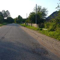 деревня Рахнихино, Остров
