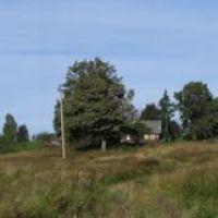 деревня Нешино, Остров