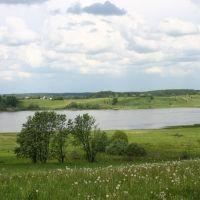 """Lake """"Ilmen"""", Остров"""