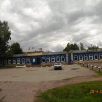 Палкино. Псковская область., Палкино