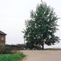 Smolinskoe ozero  Palkino, Палкино, Смолинское озеро, Палкино