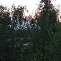Вид с балкона д.4 кв 42 по ул, Псковская, Палкино