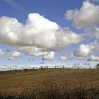 Облачка над Борохновым, Палкино
