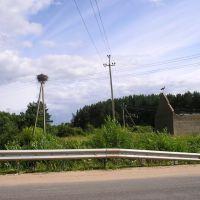 Panorama. Кому граница а кому дом родной., Печоры
