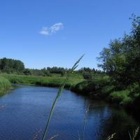 Река Плюсса, Плюсса