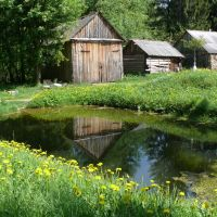 Старый пруд, Плюсса
