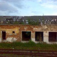 Развалины на подъезде к Плюссе, Плюсса