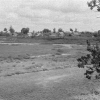 Порхов. Заливная лужайка на р.Шелони. 07/1956г., Порхов