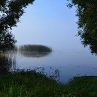 Пустошка. Озеро. Туман., Пустошка