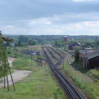 г. Пустошка, вид на станцию, 2007, Пустошка