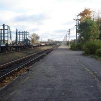 станция, г. Пустошка, Пустошка