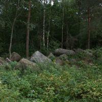 Old stones, Пушкинские Горы