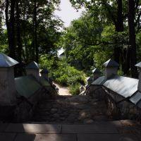 Stairs, Пушкинские Горы