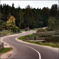 Дорожка в осень, Пушкинские Горы