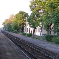 Струги Красные. Вид из окна поезда 677 Санкт-Петербург - Великие луки. 20 июля 2010 г., Струги-Красные