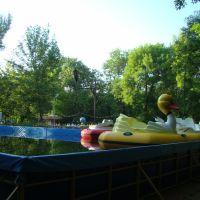 Утро в парке, Азов