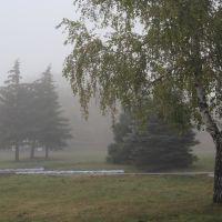 Осенний туман. Autumn fog., Азов
