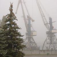 Краны. Cranes., Азов