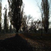 Park near school, Алмазный