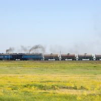Cargo train with diesel locomotive 2TE116U, Аютинск