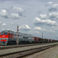 Diesel locomotive 2TE116U-0135 with cargo train on passing train Vasilievsky, Аютинск