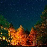 Ustdonetsk forestry, Аютинск
