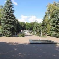 Батайск / Bataysk, Батайск