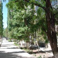 Улица Калинина на запад, Белая Калитва