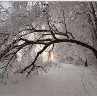 Зима в хуторе Сеньшин, Боковская