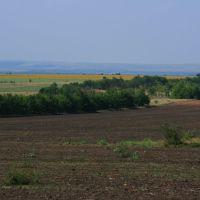 Леса,поля,луга,, Боковская
