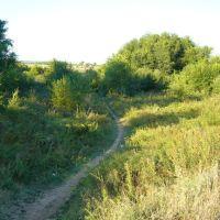 Тропинка К Пляжу. The path to the beach, Большая Мартыновка