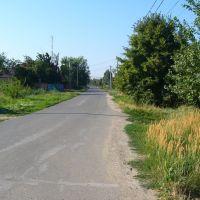 Ул.  Советская, Дорога К Центру (2011). Street. The Soviet, The Road to the center (2011), Большая Мартыновка