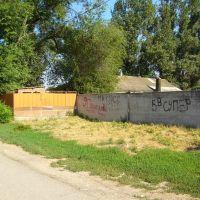 Стена. wall, Большая Мартыновка