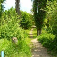 Тропинка к Школе. The path to school, Большая Мартыновка