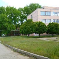 Мартыновская Средняя Школа. Martynovskaya Middle School, Большая Мартыновка